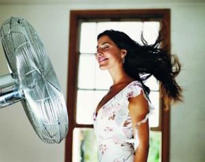 ventilyator2