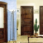 dveri_massivnie2