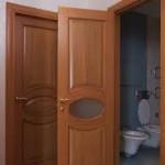 dveri_shpon2